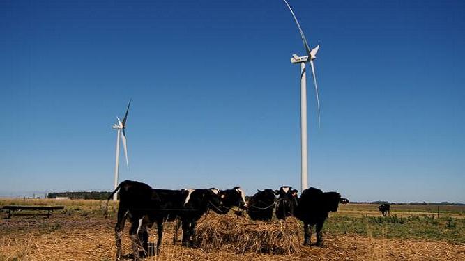 Michelini: En diez años las tarifas energéticas podrían bajar 15%
