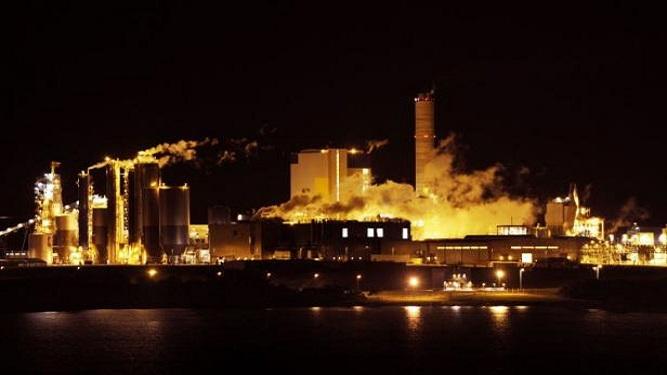 Arana expresa preocupación por la nueva planta de UPM